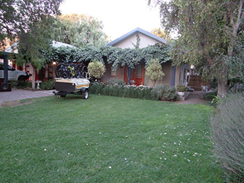 La Paix Guest House - beautiful gardens
